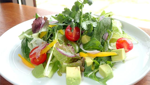 週替り野菜サラダ