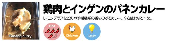 鶏肉とインゲンのパネンカレー